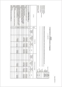 otchet-2018-1-300x215-border1pix.jpg
